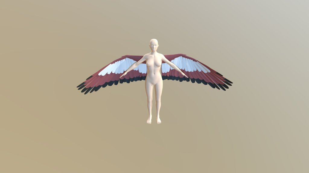 Winged human